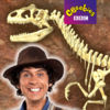 Andy's Great Fossil Hunt