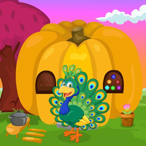Cute Peacock Rescue Kavi Game-385