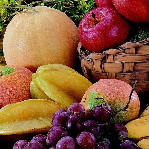 과일 퀴즈