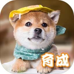 元气小狗(测试服)