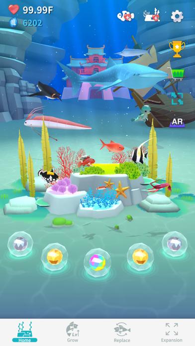 """Pocket Aquarium """"Pokerium"""